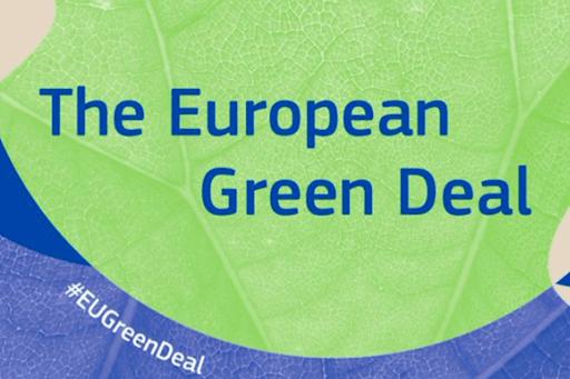 DIPLOMAZIA CLIMATICA ED ENERGETICA: LA NUOVA FRONTIERA DELL'UE