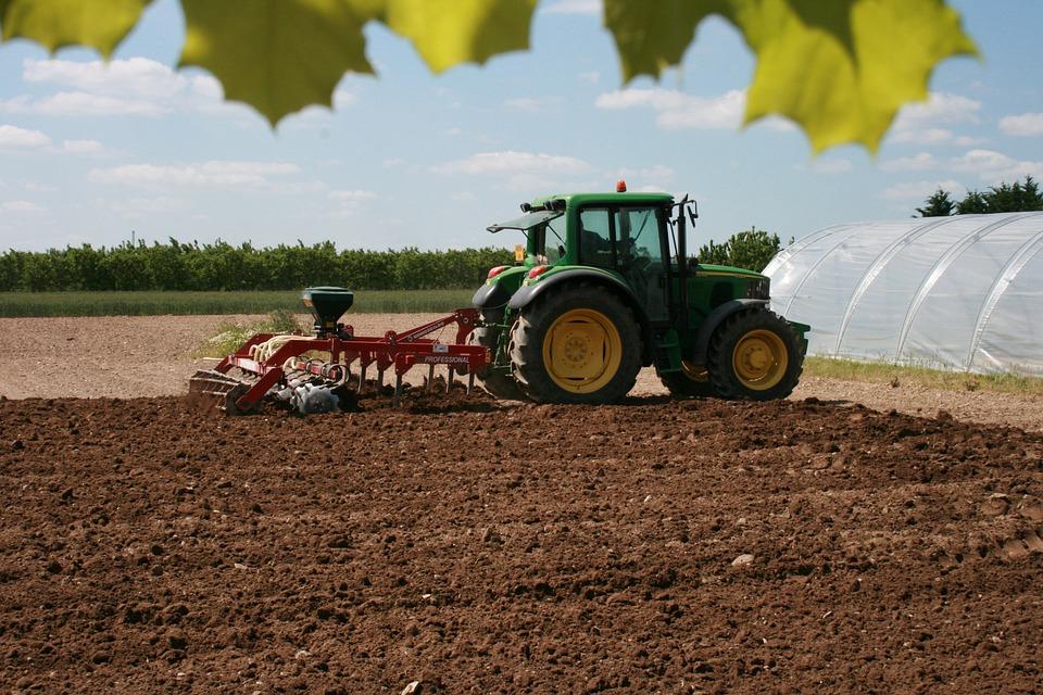 DIFESA SUOLO: SERVE L'AGRICOLTURA BIOLOGICA