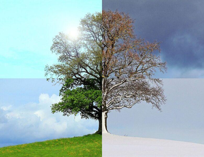 LA TEMPERATURA GLOBALE CRESCE? IL FREDDO SI FA ESTREMO