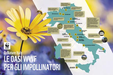 PESTICIDI, WWF: SCOMPARSO NEGLI ULTIMI 30 ANNI IL 70% DEGLI IMPOLLINATORI