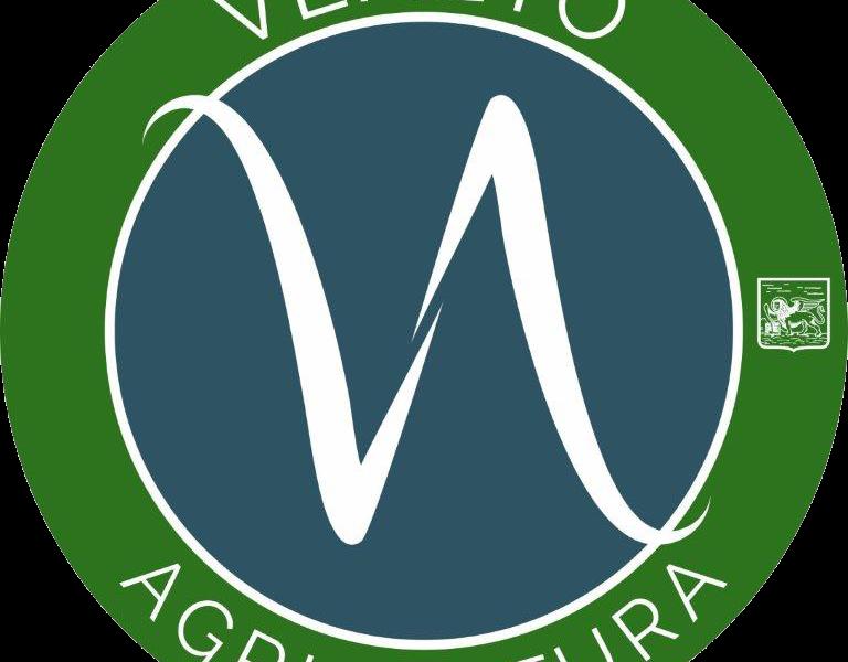 IL REPORT, L'AGRICOLTURA VENETA 2020 VALE 6,1 MIA/€ (+1,1%). E IL 2021? PER ORA PIU' LUCI CHE OMBRE