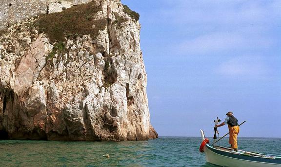 MEDITERRANEO, MARE PIÙ CALDO PESCI E AMBIENTE A RISCHIO